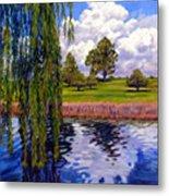 Weeping Willow - Brush Colorado Metal Print
