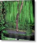 Weeping Willow Metal Print