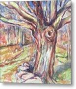 Weir Farm Oak Tree Metal Print