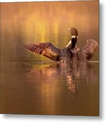 Welcome To A New Day Metal Print