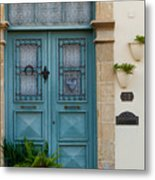 Welcoming Entrance And Strolling Cat Metal Print