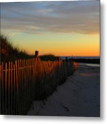 Welcoming The Day Metal Print