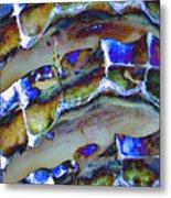 Welk Shell Metal Print