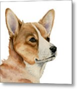 Welsh Corgi Dog Painting Metal Print