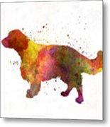 Welsh Springer Spaniel In Watercolor Metal Print