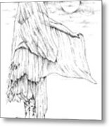 Welsh Witch Metal Print