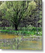 Westcreek Reservation 12 Metal Print