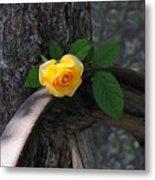 Western Yellow Rose II Metal Print
