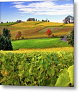 Westward From Domaine Drouhin Metal Print