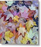 Wet Fall Leaves Metal Print