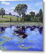 Wet Land - Shaw Nature Reserve Metal Print