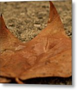 Wet Leaf Metal Print