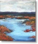 Wetlands Of Washington Metal Print