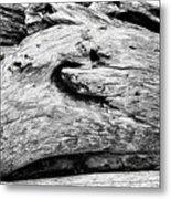 Whake Driftwood Metal Print