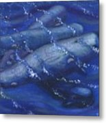 Whales under the Surface-Is that Moby Dick on the Bottom Metal Print