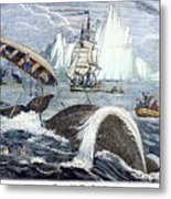 Whaling, 1833 Metal Print by Granger