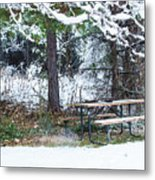 What A Day For A Picnic Metal Print