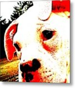 What A Face Metal Print