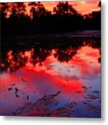 What A Morning Metal Print
