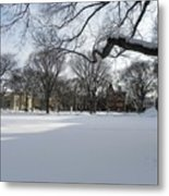 What I Love About Winter Metal Print