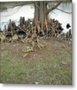 What In The Roots Metal Print