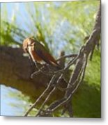 What Is Down There Metal Print