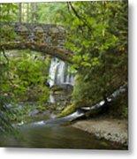 Whatcom Falls Bridge Metal Print