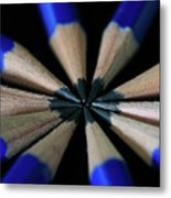 What's The Point Metal Print by Tracy Hall