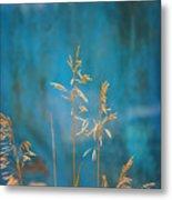 Wheat On Blue 1 Metal Print