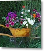 Wheelbarrow Beauty Metal Print