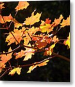 When Colors Think Outloud Metal Print
