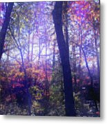When Forests Dream Metal Print