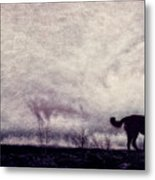 When Night Closes In Metal Print