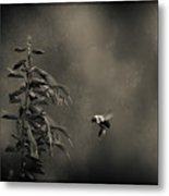 When Once A Bee Flew Metal Print