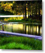When Summer Glows And Crickets Chirp  Metal Print