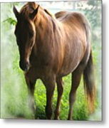 When You Dream Of Horses Metal Print