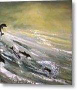Where Dolphins Play Metal Print
