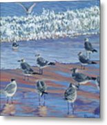 Where Seagulls Play Metal Print