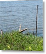 Where The Fence Ends Metal Print
