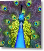 Whimsical Peacock Metal Print