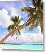 Whispering Palms. Maldives Metal Print