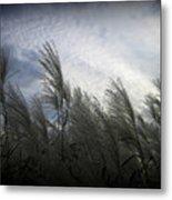 Whispers In The Wind Metal Print by Trina Prenzi