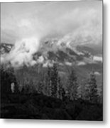 Whispy Metal Print