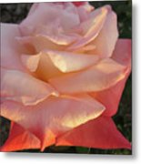 White And Peach Metal Print