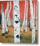 White Birches Metal Print
