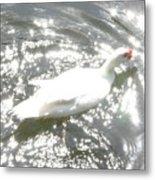 White Bird On Sparkly Water Metal Print