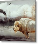 White Buffalo And Raven Metal Print