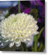 White Chrysanthemum Flower Metal Print