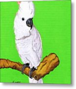 White Cockatoo Metal Print