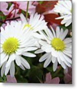White Daisy Floral Art Print Canvas Pink Blossom Baslee Troutman Metal Print